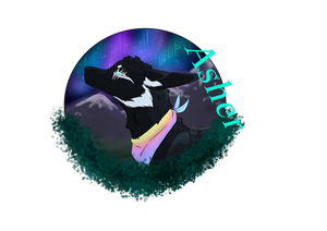 Asher medallion {updated}