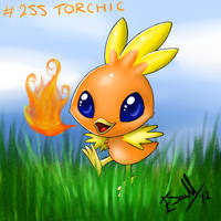 Torchic by crack-turtle