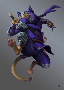 Ninjakat