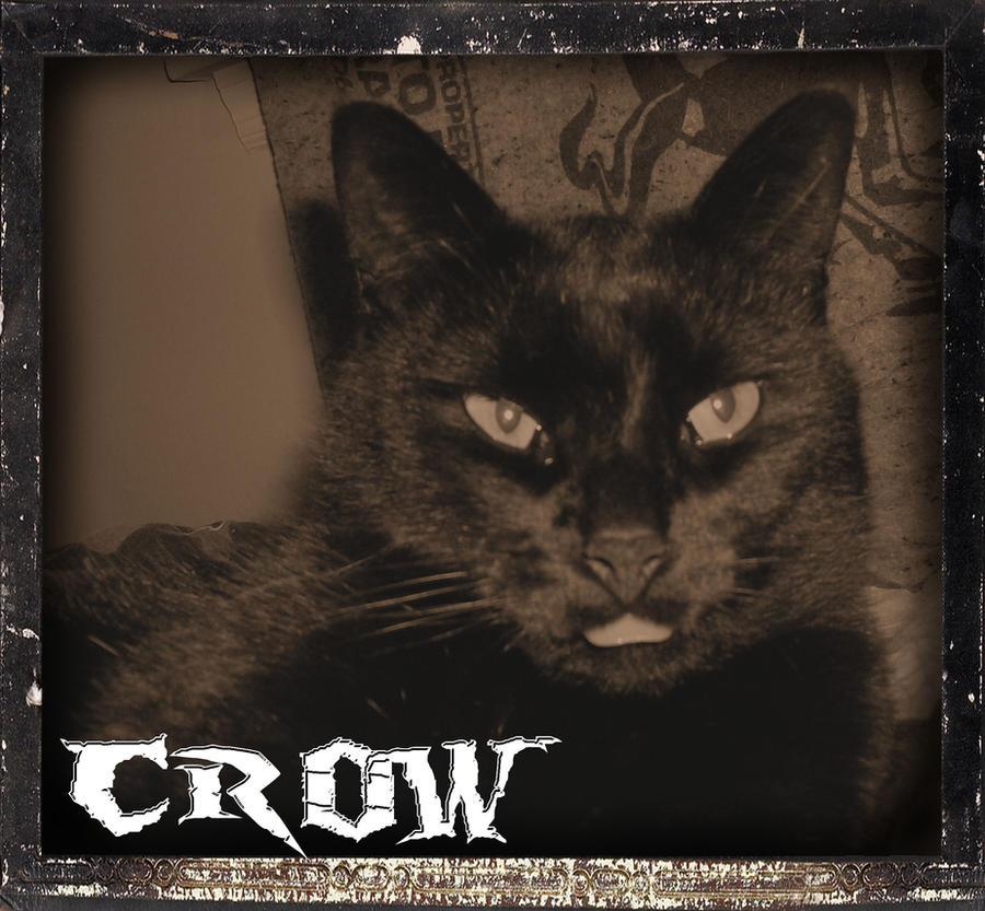Crow by RageFish21