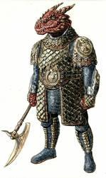 Dragonborn Captain by mentat0209