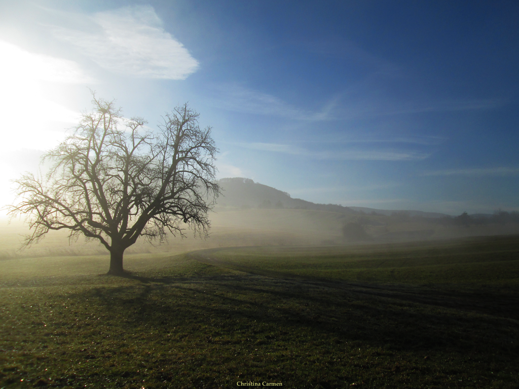 Fainting Mist by Miounz