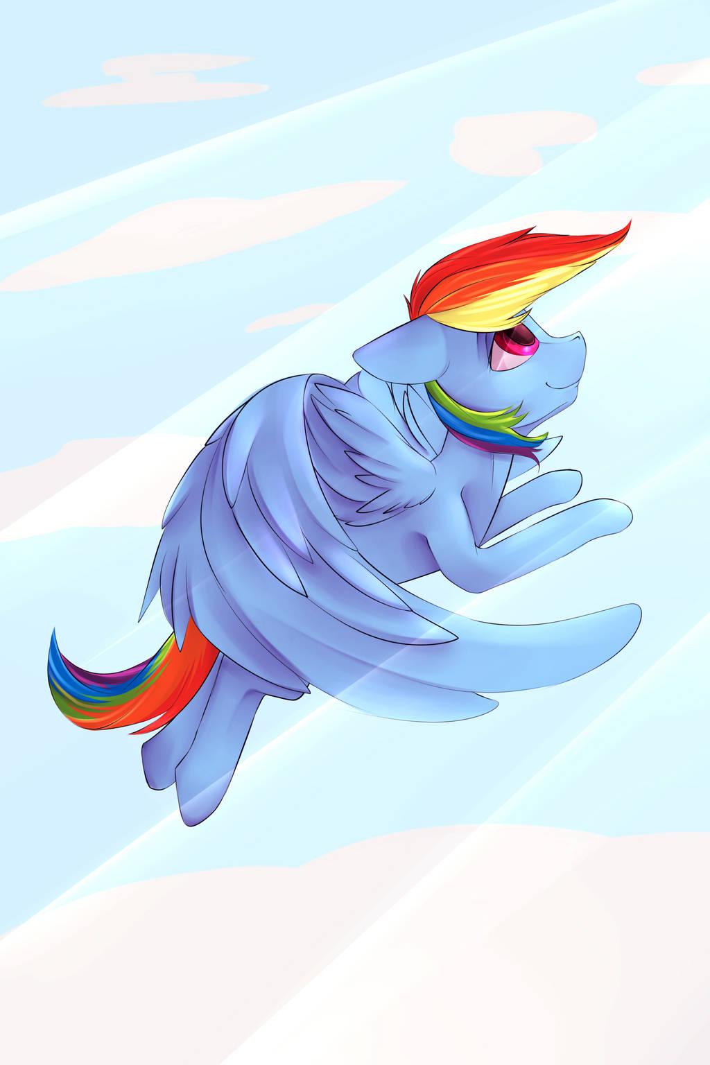 Mane 6(Rainbow Dash) by Chapaevv