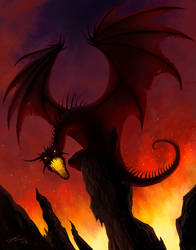 Black Dragon by Tyrus88