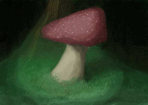 A Mushroom in a Forest