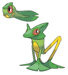Flying Frog Pokemon