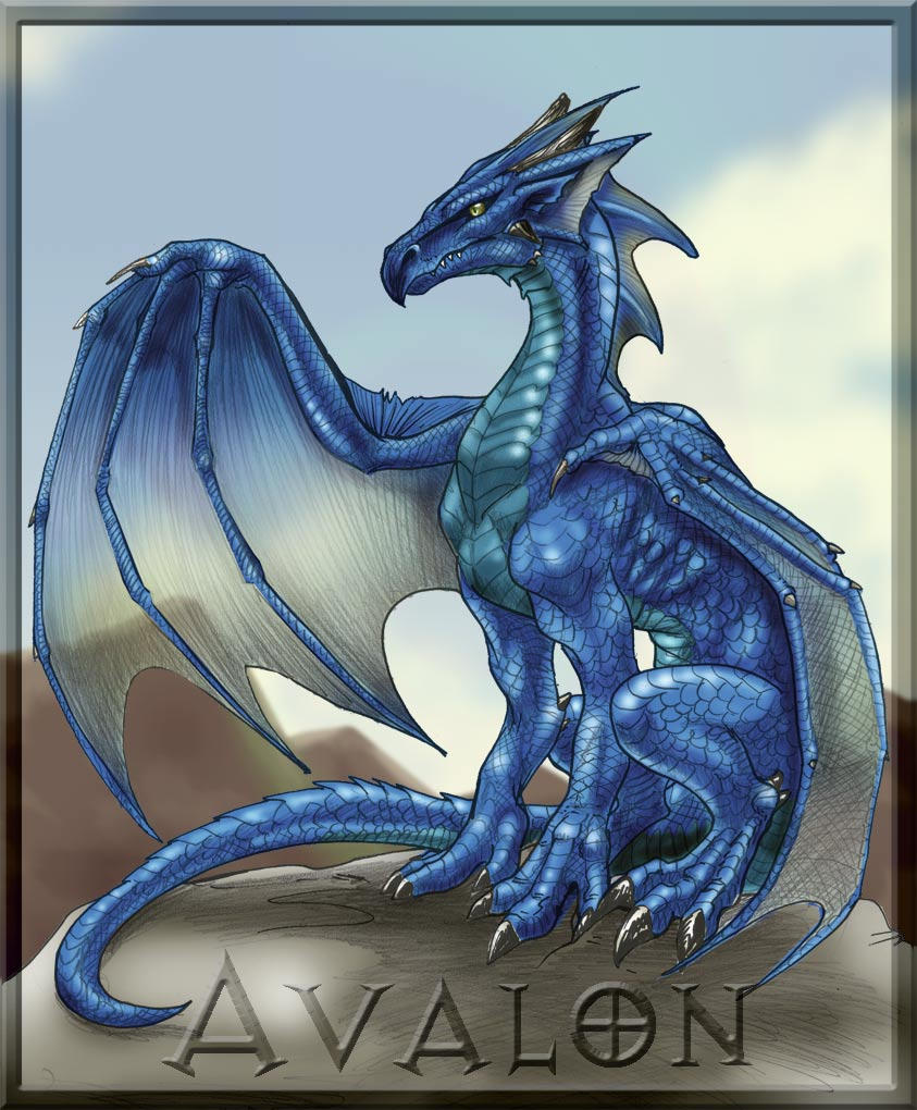 avalon the blue dragon by mafagafa on deviantart