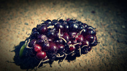 A bramble or a bunch of grapes