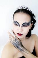 Black Swan by AN0RIEL