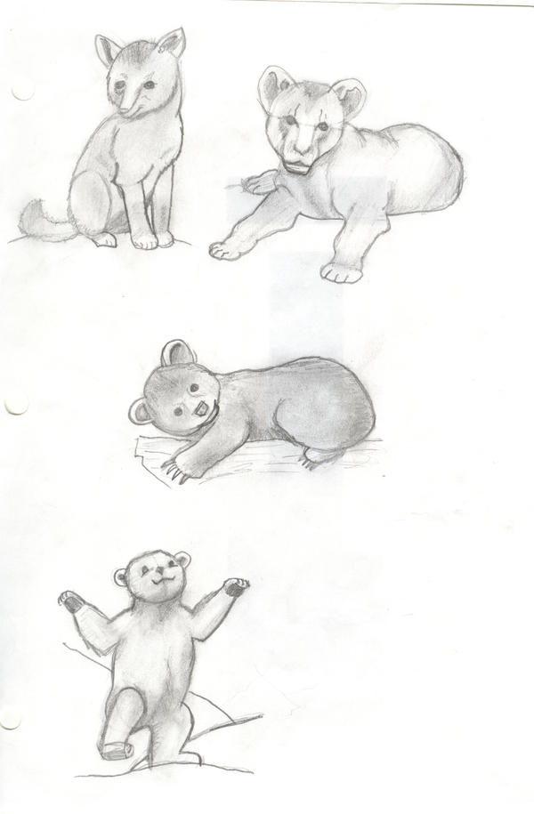 baby animal sketches by guidedoglover