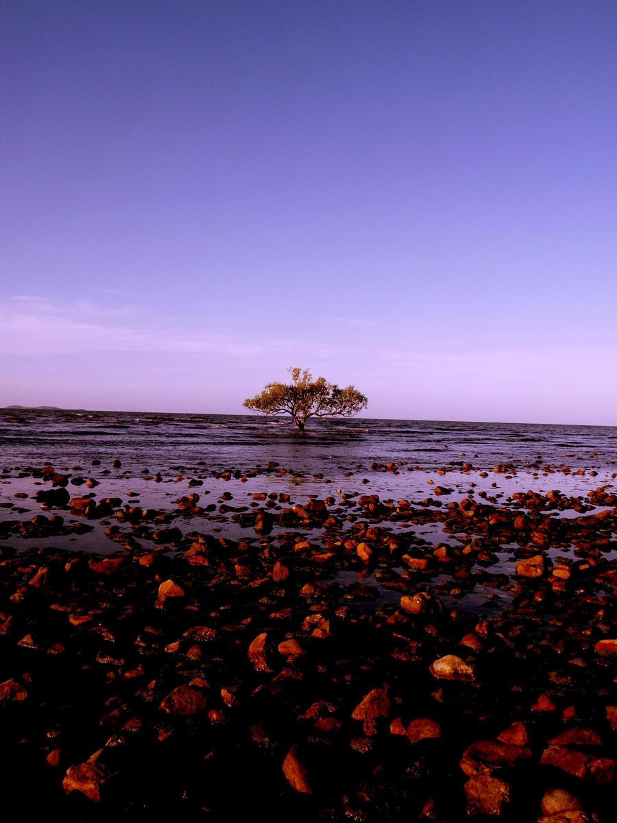 VIOLET Sunset_sky__by_lrosephotography