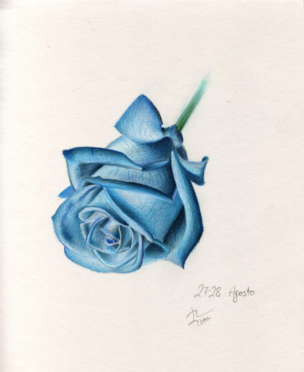 Blue rose by IvanJovanovic