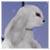 White Rabbit by Falln-Avatars