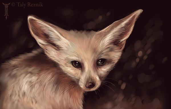 Fennec Foxy by TrollGirl