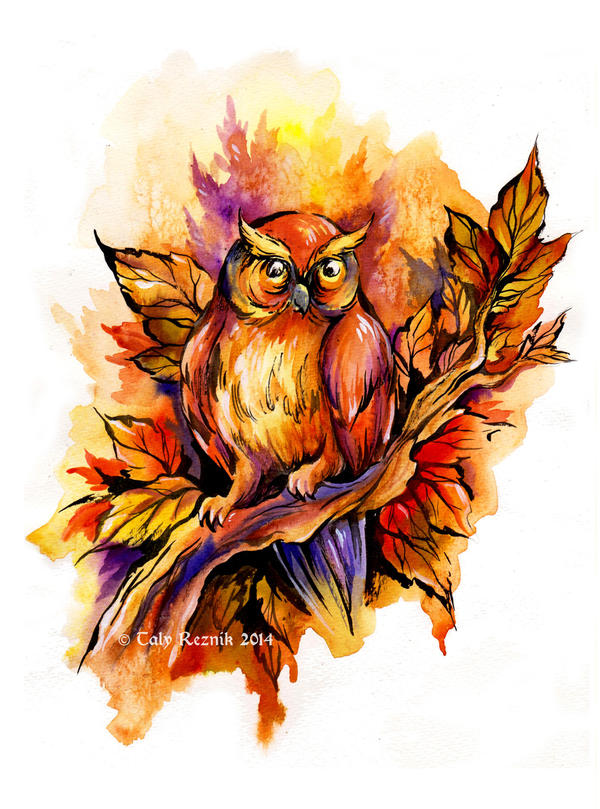 Fall Owl by TrollGirl