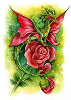 Red Rose Fairy Dragon by TrollGirl