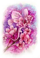 Sakura Fairy Dragon by TrollGirl