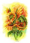 Sunflower Fairy Dragon