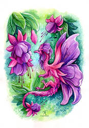 Fuchsia Fairy Dragon by TrollGirl