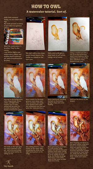 Owl Watercolor Step-by-step