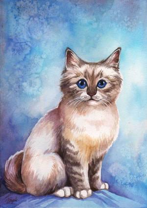 Kitten by TrollGirl