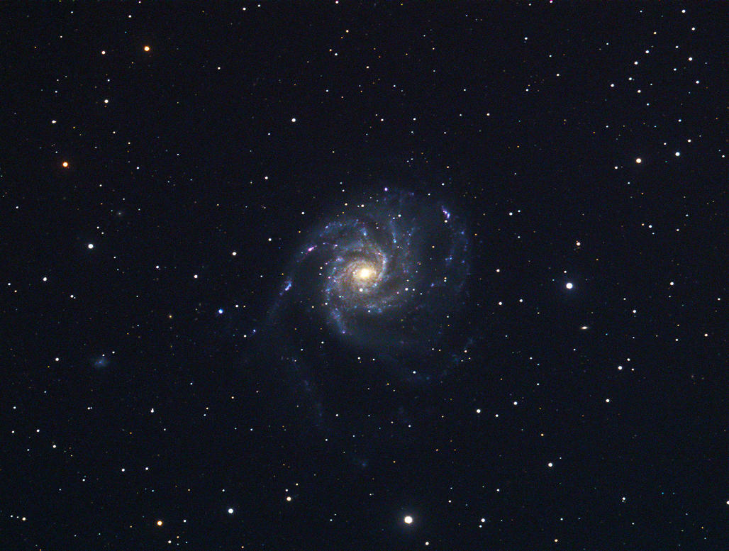 M101 by RedXen