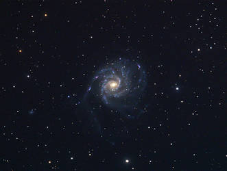 M101 by RedXen