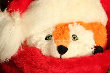 Foxy Santa