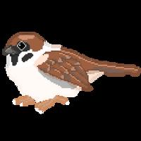 Sparrow Pixel