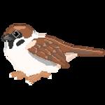 Sparrow Pixel by Meemooi