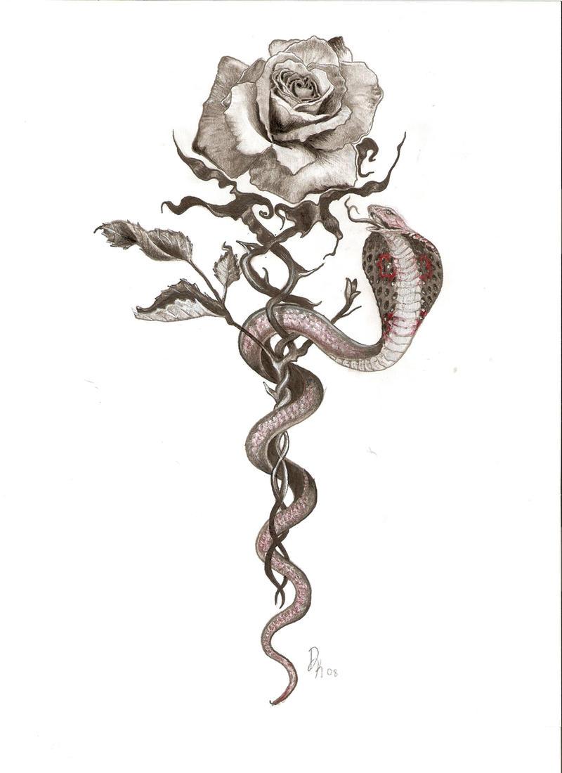 роза и змея в картинках