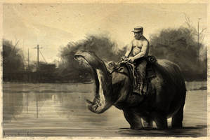 Hippo rider by RyanLovelock