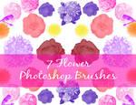 7 Flower Brushes for Photoshop CS5
