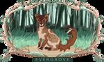 [Evergrove] || Sorrelkit of GroveClan