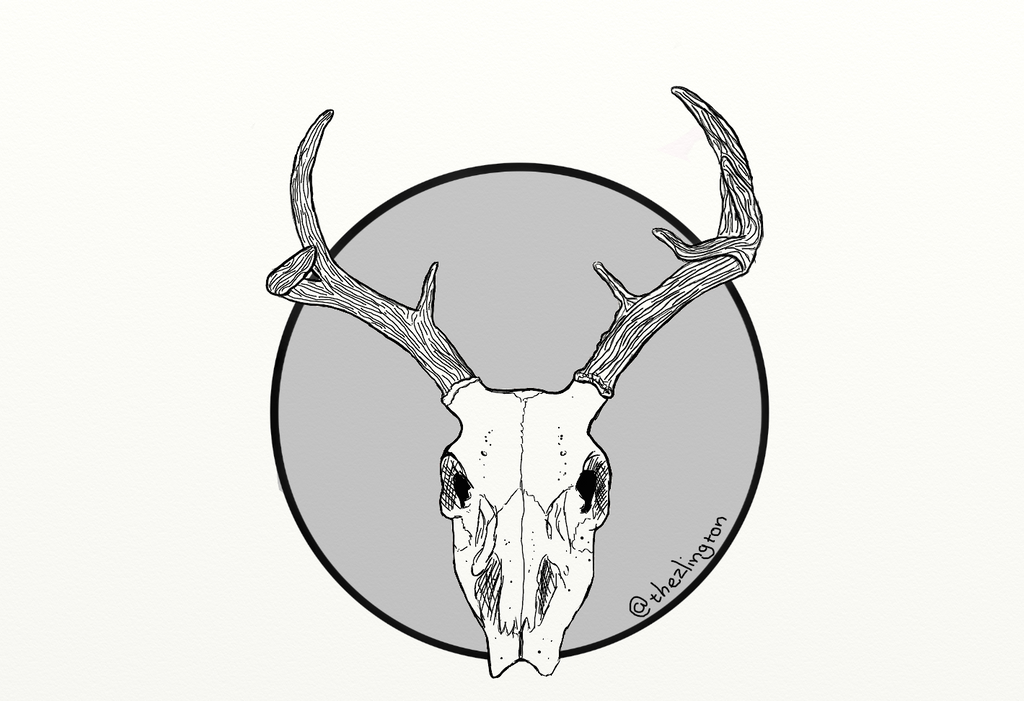 Deer Skull by Thezlington