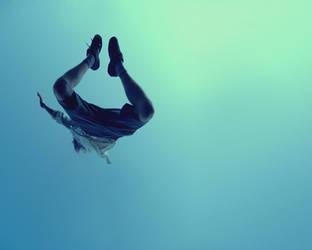 fly, flew, flown by edlyytam