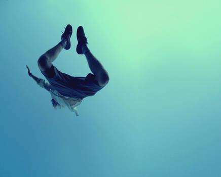 fly, flew, flown