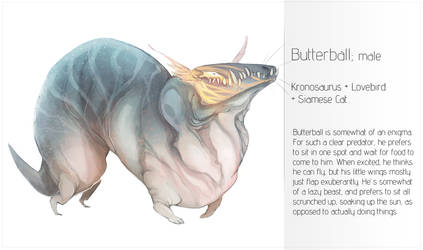 TMM: Butterball by Delta-Hexagon