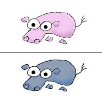 Pig and Hippo by Wayka
