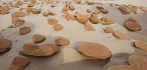 Sand Gnocchi