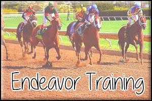 Endeavor Training Avatar 1 by InspiringWolves