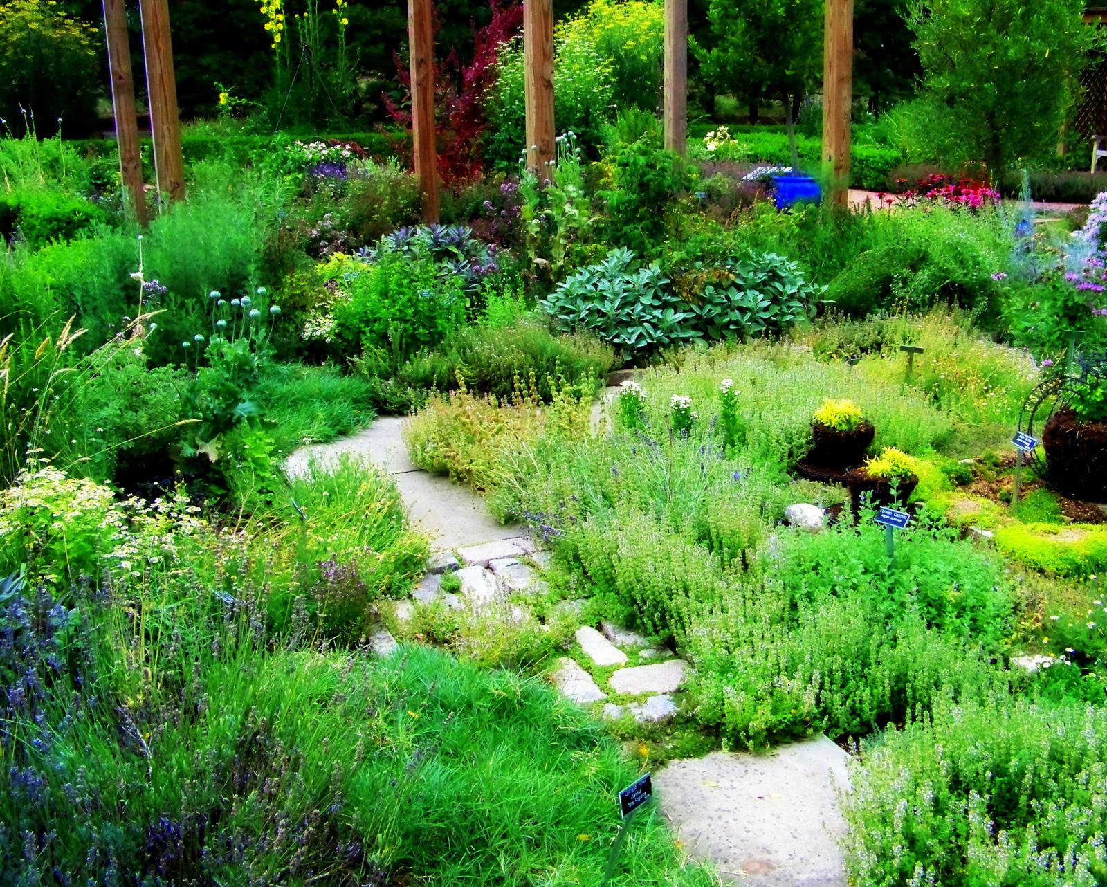 Buy Raised Garden Beds Australia