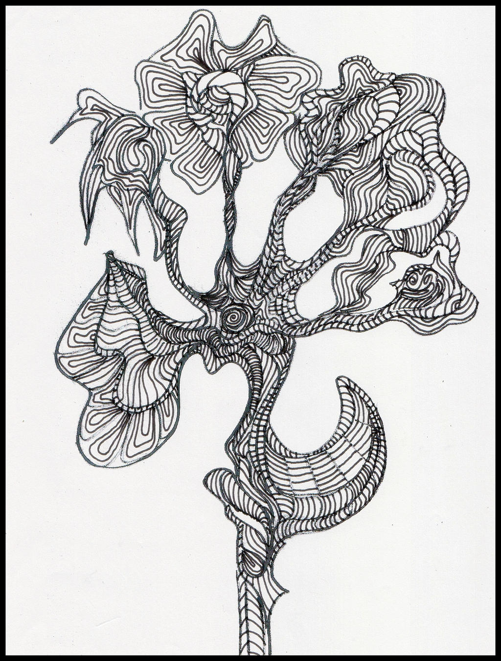 Hybrid var. theSpiralmeister x MadGardens by MadGardens