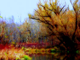 Shades of Autumn 4 by MadGardens