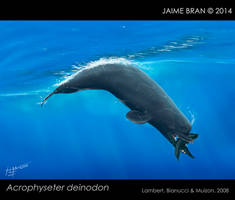 Last of the killer sperm whales by Bran-Artworks