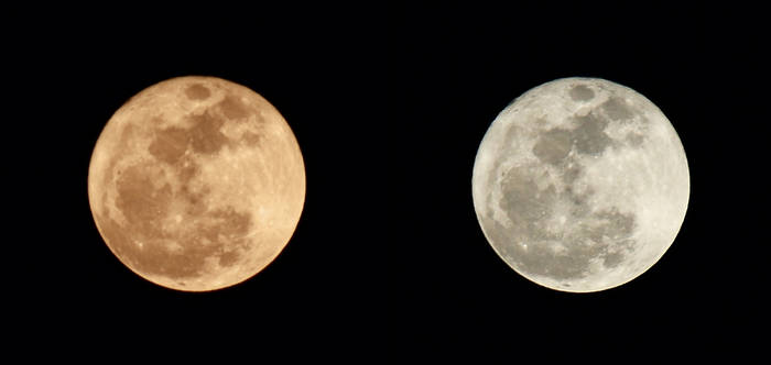 The Notorious Super Moon