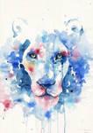 Different lion