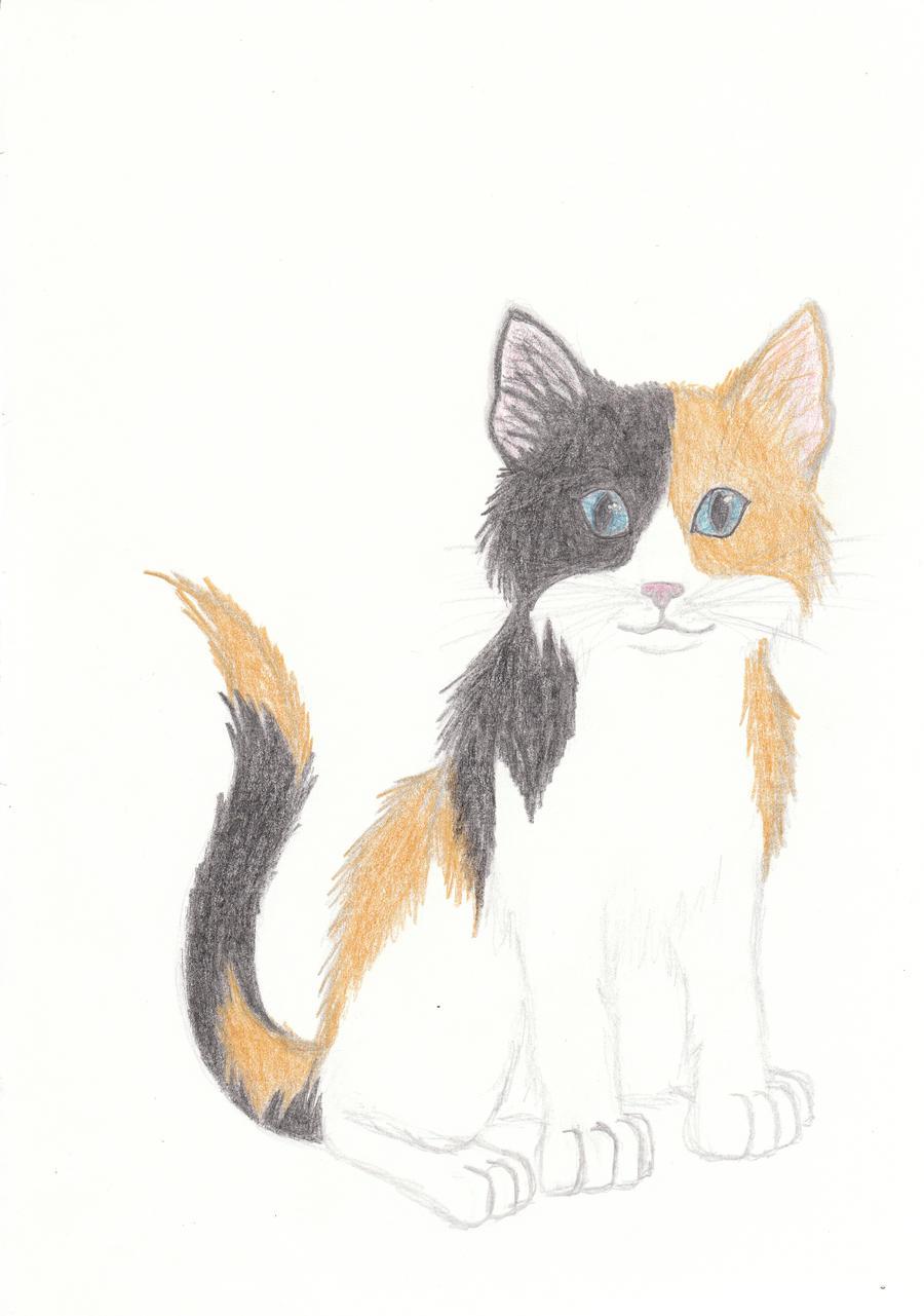 tortoiseshell kitty drawing by minakowolf37 on deviantart