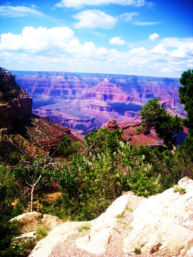 Grand Canyon by ILoveErik-PotO