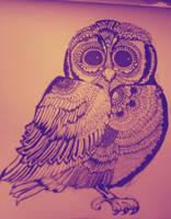 Owl by LissyWAR